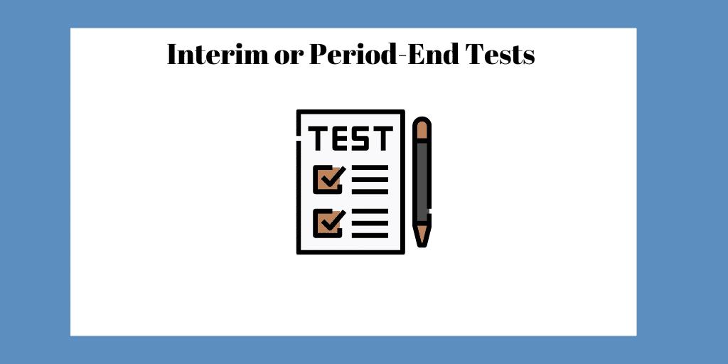 interim audit test